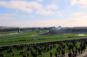 Cheltenham Festival 2020 – What To Expect?
