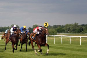 Top 10 Most Famous Racehorses of All Time