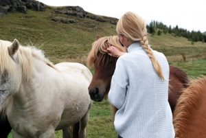 Horses as Therapists