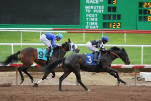 Top 5 Epic Moments in Horse Racing History
